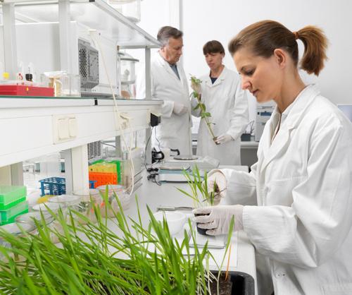 tìm việc làm công nghệ sinh học tại hải phòng
