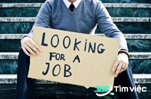 blogdoctin.net - Một vài kĩ năng chọn lựa công việc cho sinh viên nên chú trọng