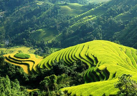 vnmost.com - Lưu giữ kinh nghiệm du ngoạn Hà Giang cho khách du lịch
