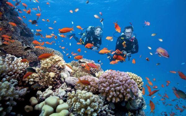 Astarvn.com - 2 homestay làm siêu lòng du khách ở Nha Trang