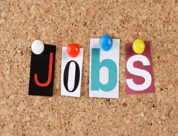 """Top 7 ngành việc làm rất """"thu hút"""" bậc nhất tại HCM"""
