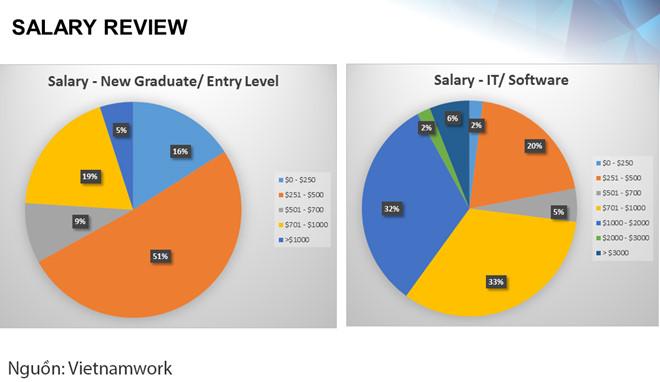 Mức lương của lập trình viên mới ra trường là bao nhiêu?